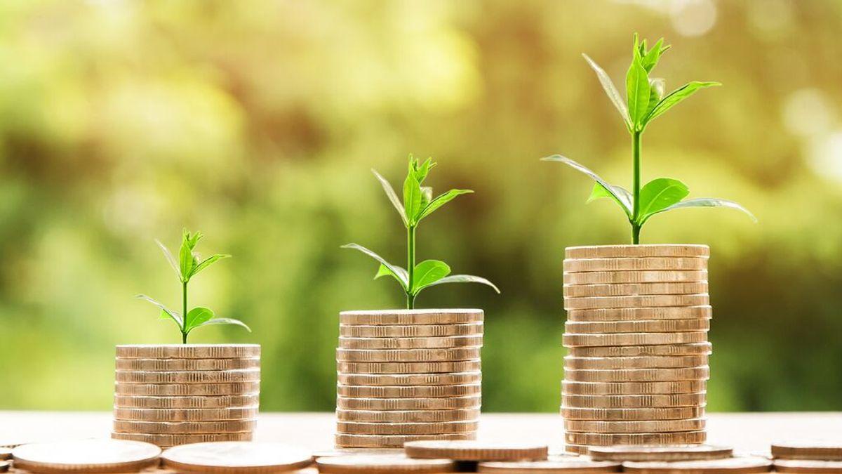 Cómo funcionan los fondos de pensiones: diferencias con el plan de pensiones