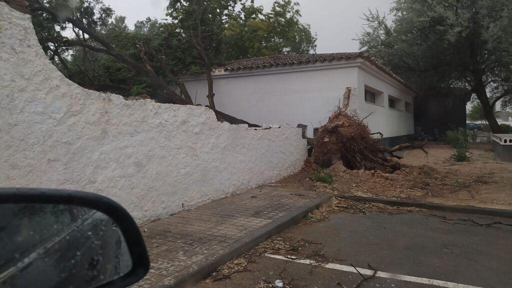 Destrozos en Toledo por las fuertes rachas de viento en plena ola de calor