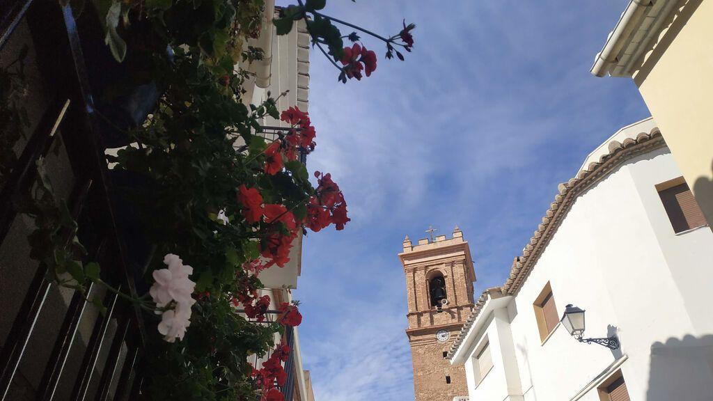 plaza d ela iglesia flores