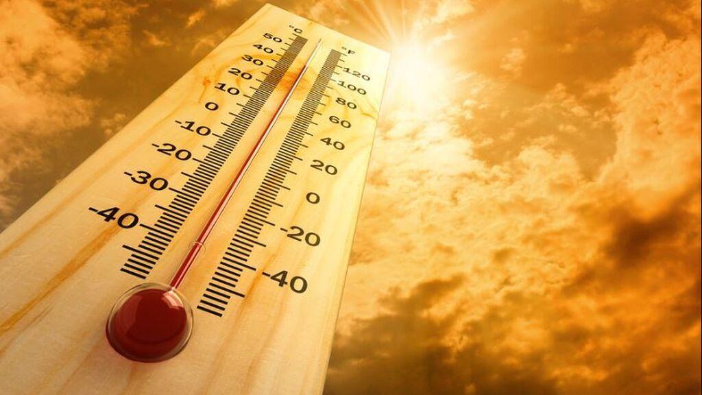 Sobrevivir a la ola de calor  y poder pagar la factura de la luz se convierte en misión imposible para muchos