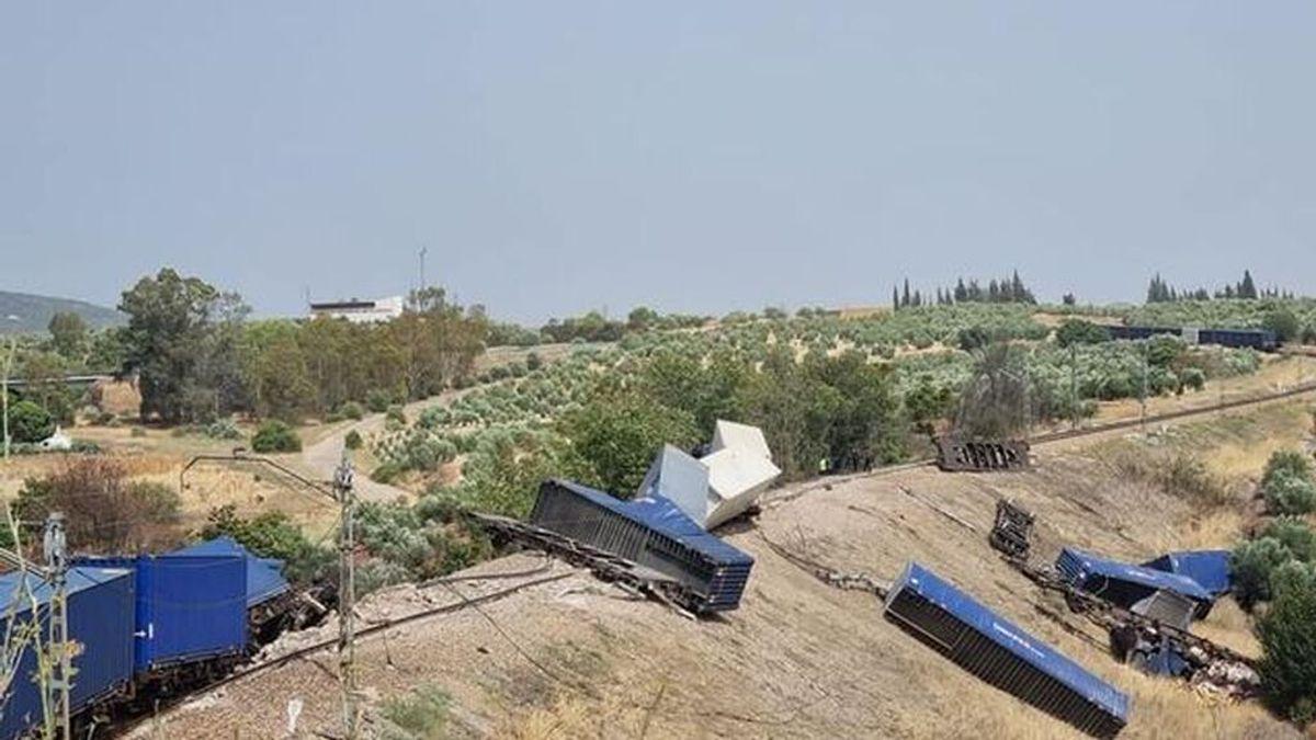 Descarrilan los vagones de un tren de mercancías en Córdoba: cinco de los coches están volcados en un terraplén