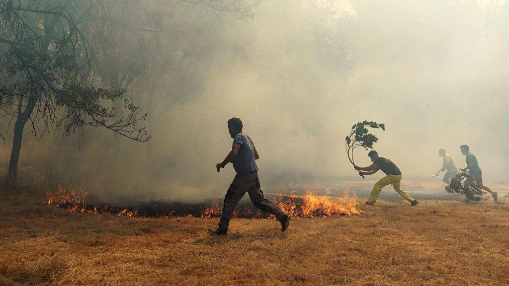 Los incendios avivados por la ola de calor queman casi 13.000 hectáreas en menos de 72 horas