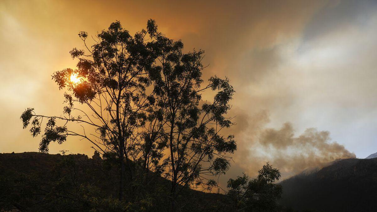 El incendio de Navalacruz sigue calcinando el terreno: más de 20.000 hectáreas ya han sido arrasadas por el fuego