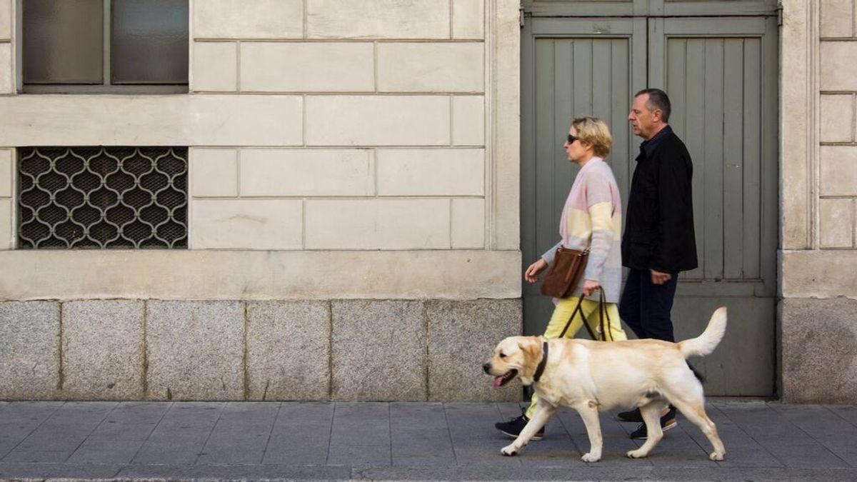 pareja perro