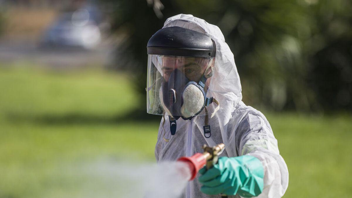 Dos personas más infectadas por el Virus del Nilo en Sevilla, una de ellas ingresada