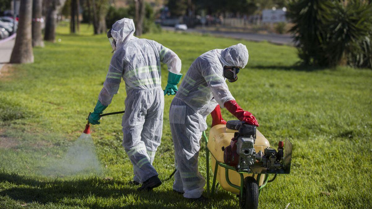 Ingresado en Sevilla el primer infectado del año con virus del Nilo Occidental