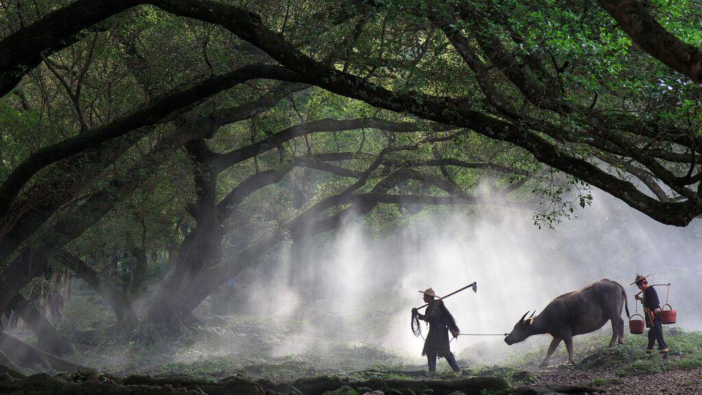 """Qué es Xiapu, el pueblo """"falso"""" al sur de China para posturear en Instagram"""