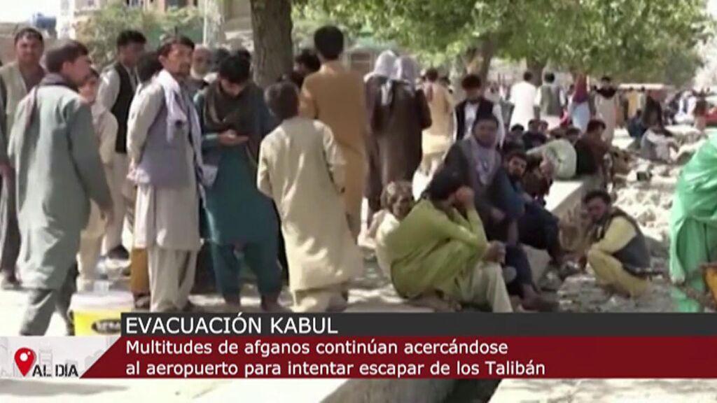 Llega a Kabul el cofundador de los talibanes mientras la desesperación continúa en el aeropuerto