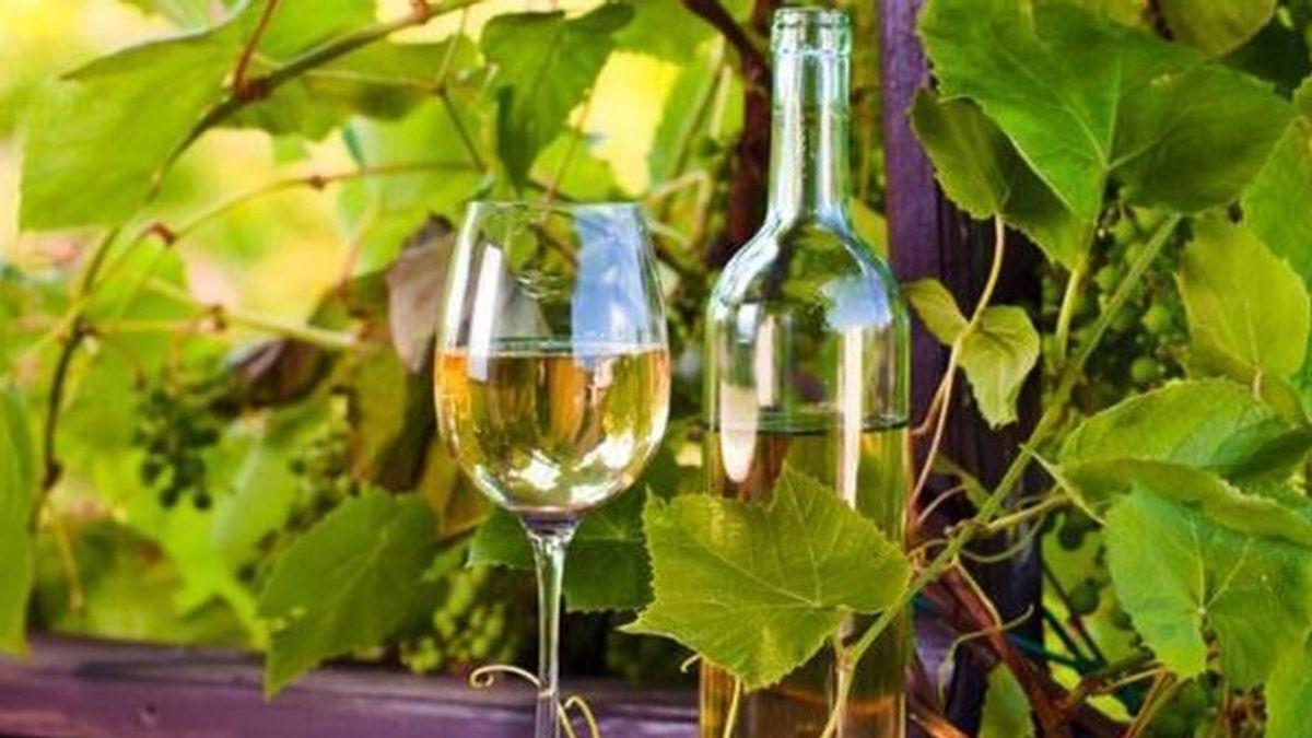 El diario británico 'The independent' nombra un vino blanco del Penedès como el mejor de España