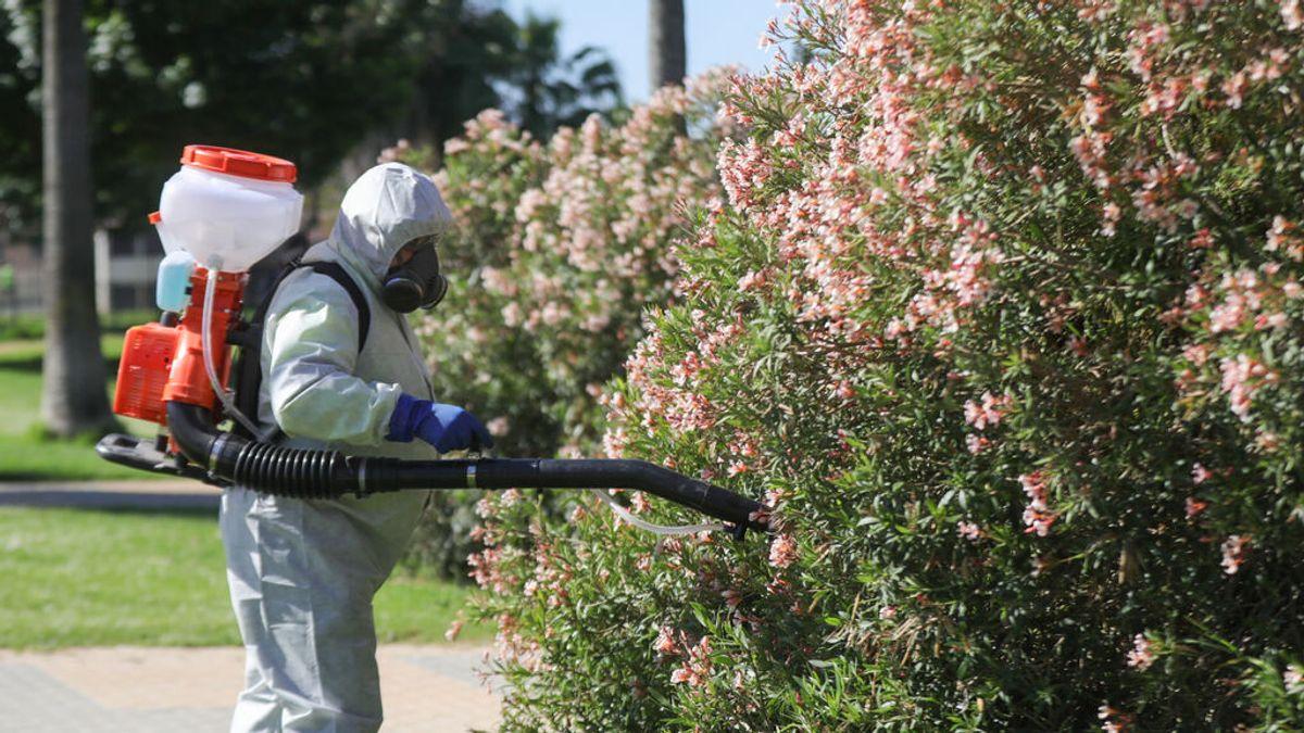 EuropaPress_3701786_operario_inician_labores_fumigacion_tratamiento_imbornales_contra_mosquito