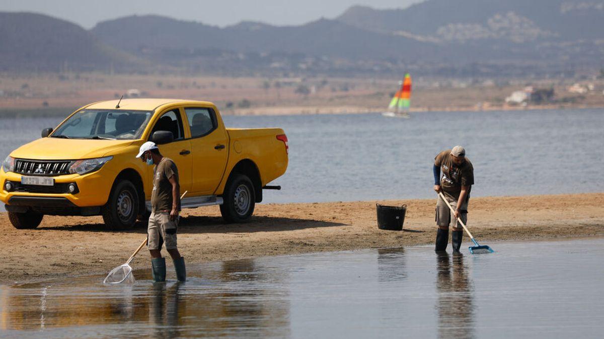 Ribera asegura que hay 317 millones presupuestados para la recuperación del Mar Menor
