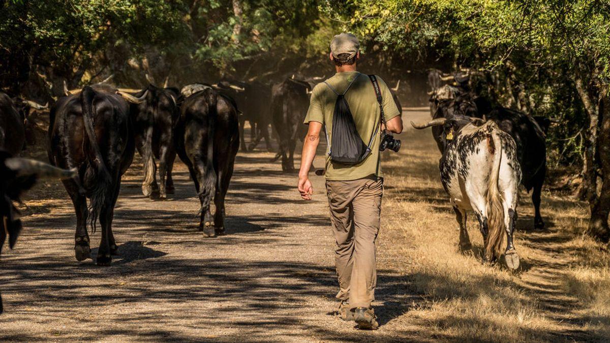 Una agencia extremeña de turismo ofrece convertirse en pastor trashumante durante unos días