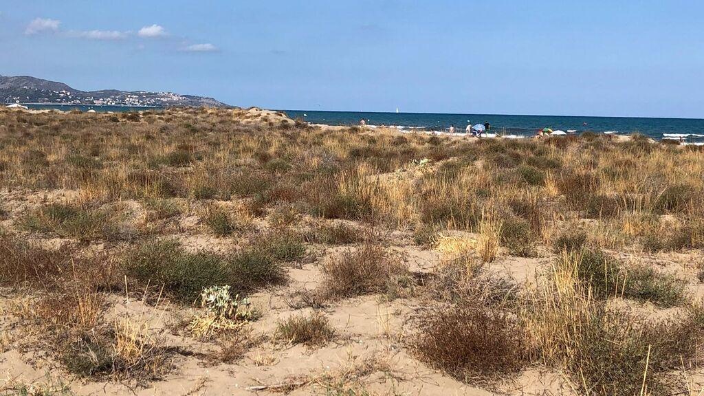 Castellón prohíbe el baño en sus playas por la rotura de un colector de la red de alcantarillado