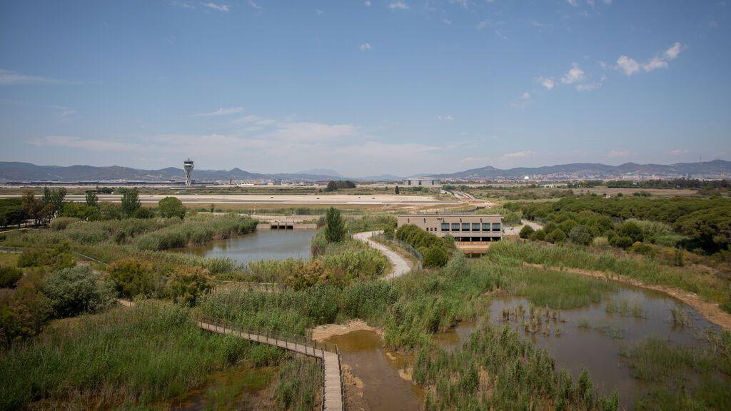 Aragonès exige a Aena que rectifique la ampliación del aeropuerto del Prat para respetar La Ricarda