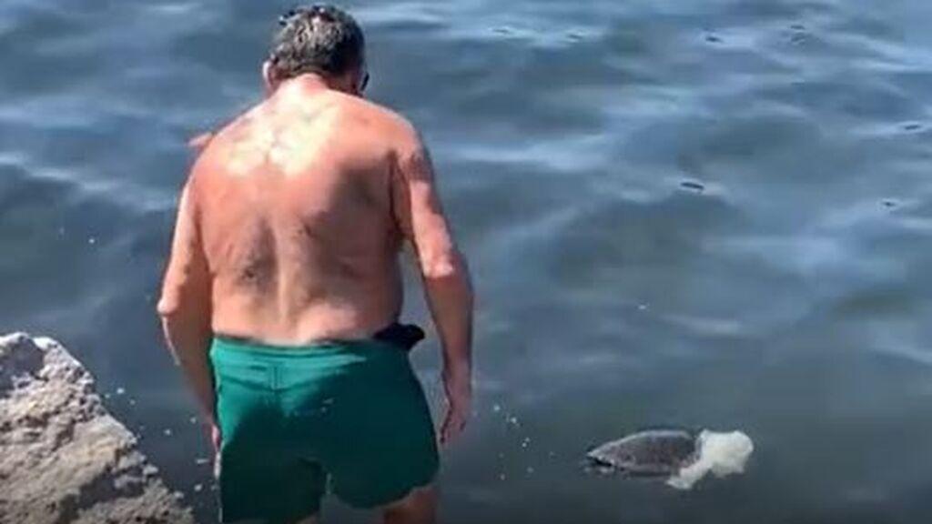 Un hombre intenta salvar a una tortuga en Río de Janeiro
