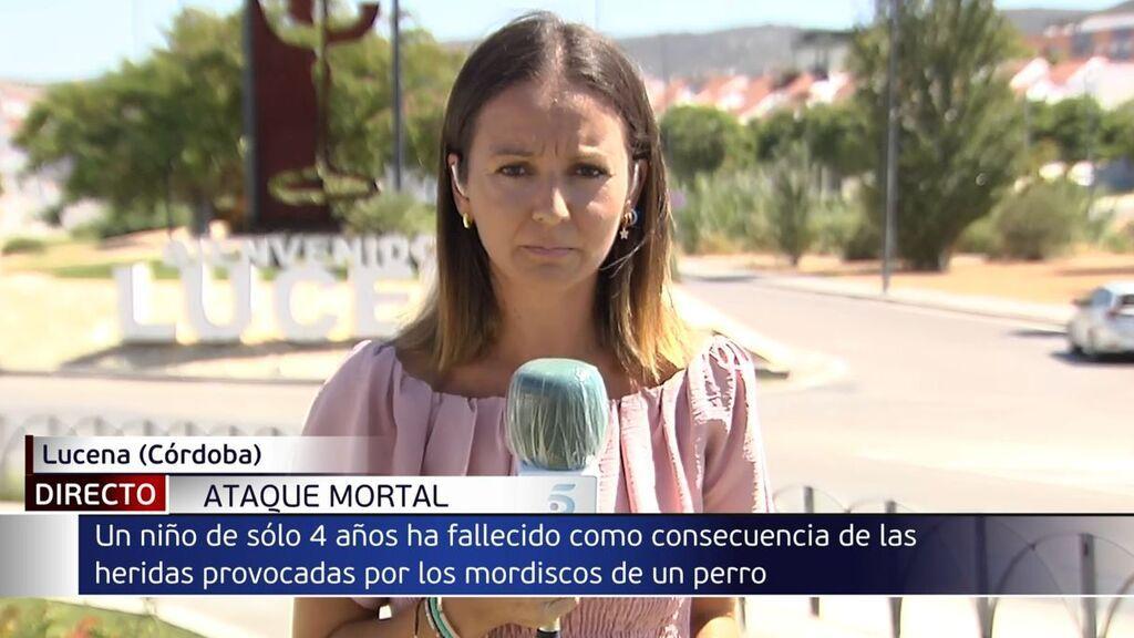 Muere un niño de cuatro años tras ser mordido por un perro en Lucena, Córdoba