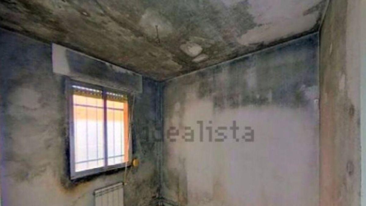 Un piso de 48m² con moho y humedades en Madrid, a la venta por 101.000 euros se vuelve viral