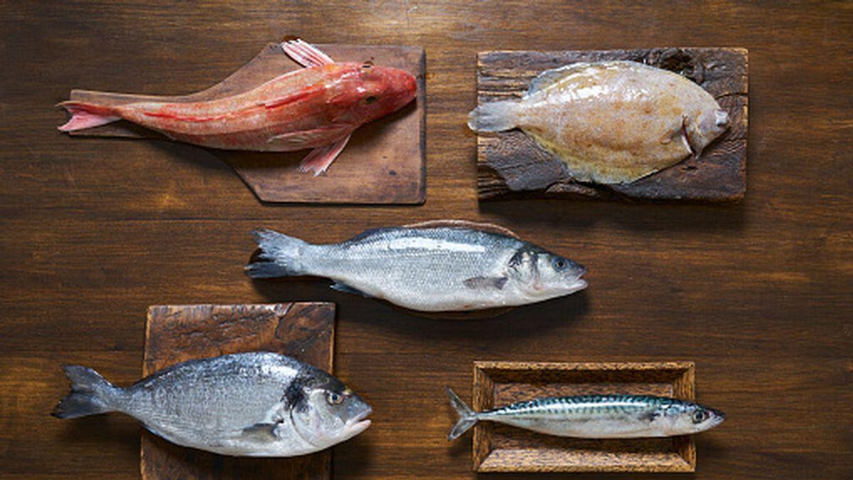 ¿Cuál es el pescado más saludable y cuál debemos evitar?