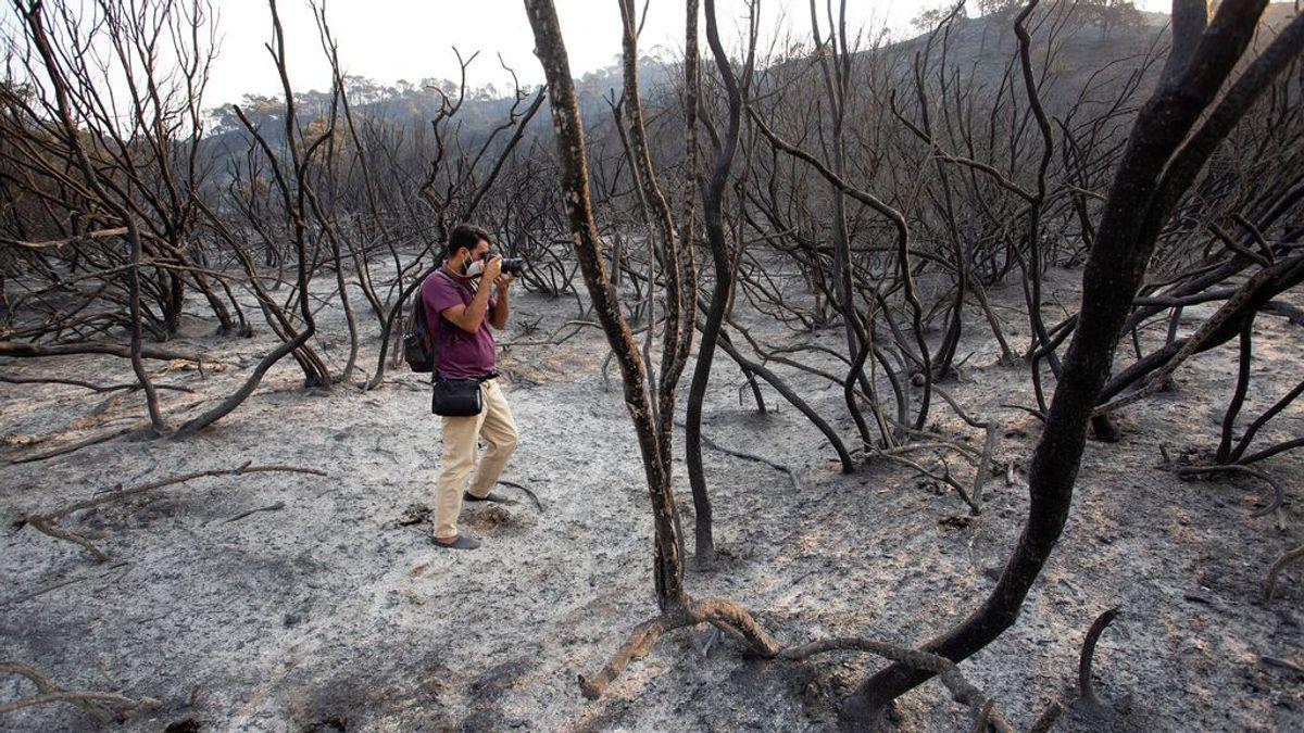"""Juanma Moreno avisa de que se dará """"caza a asesinos"""" que hayan causado el incendio si se confirma provocado"""