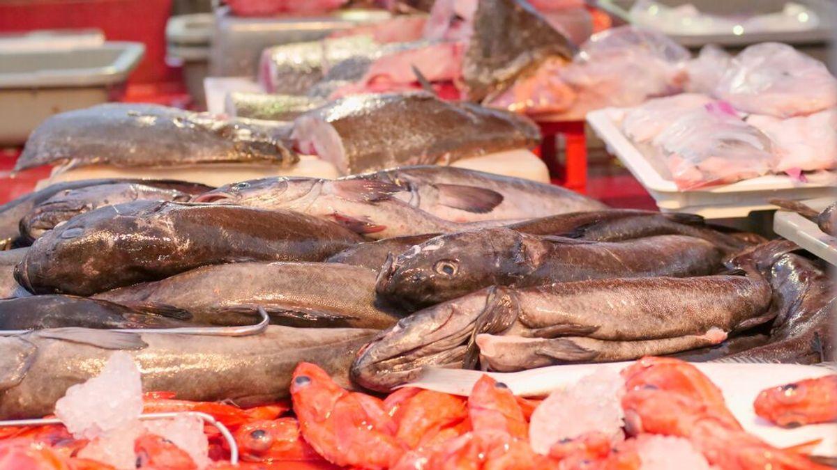Cómo saber si el pescado es fresco o congelado