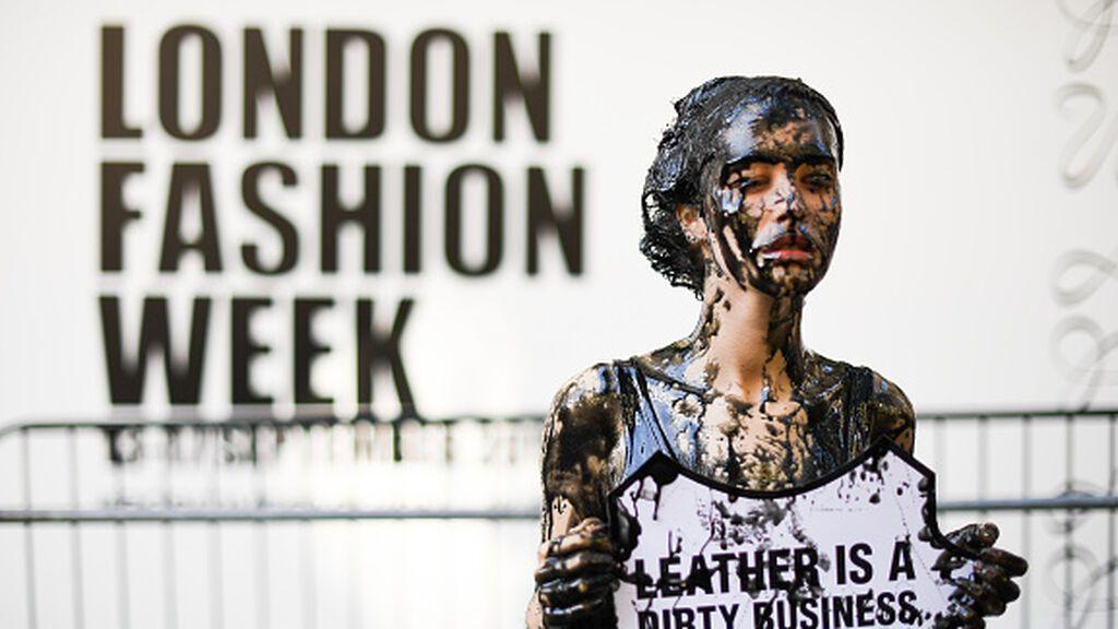 Reino Unido quiere prohibir la comercialización de pieles