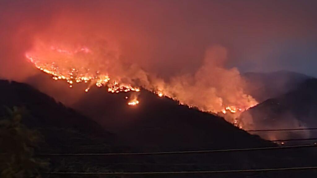 El incendio de Sierra Bermeja afecta a decenas de especies protegidas