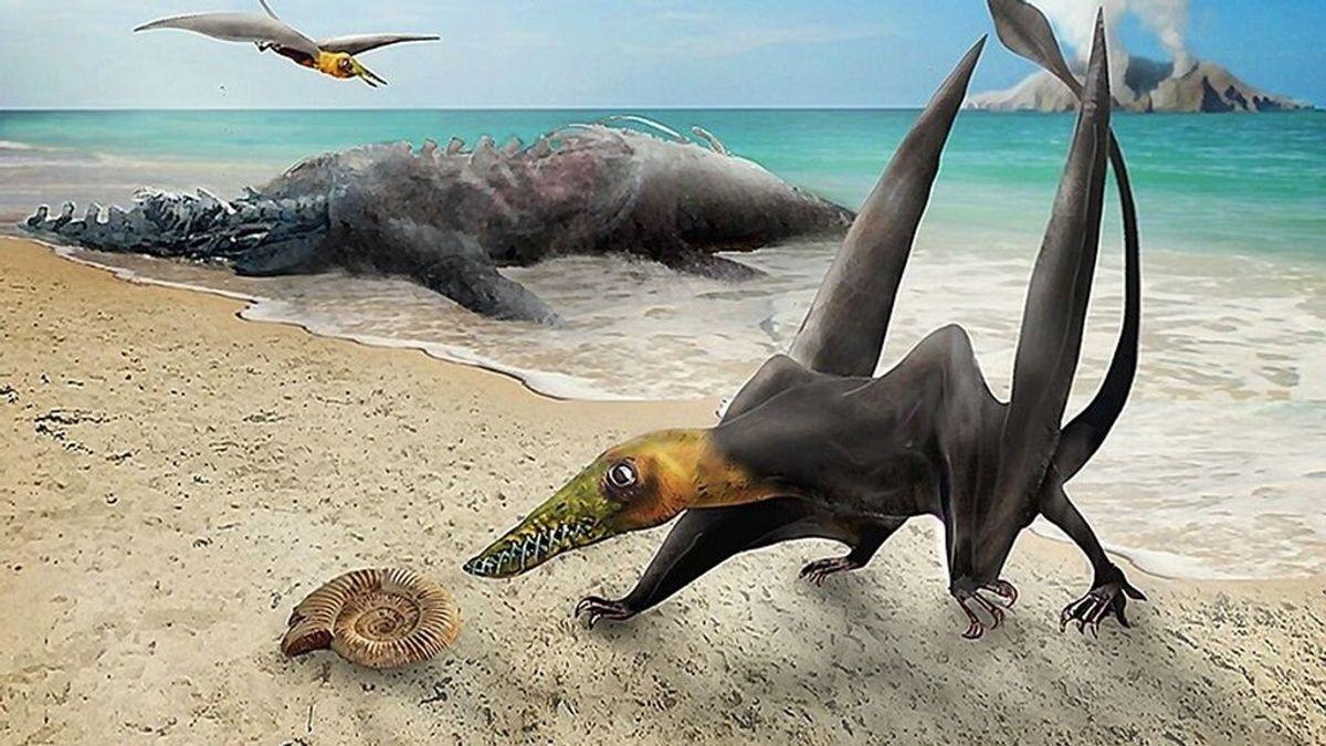 Un peculiar dragón volador del Jurásico acaba de ser identificado en Chile