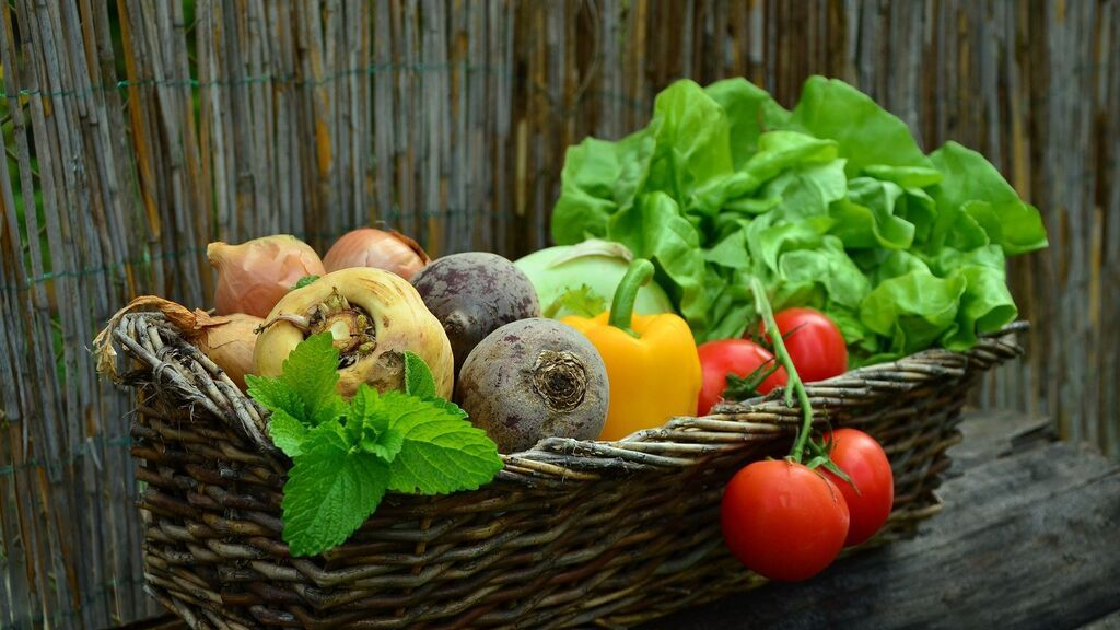 inmuno-verduras