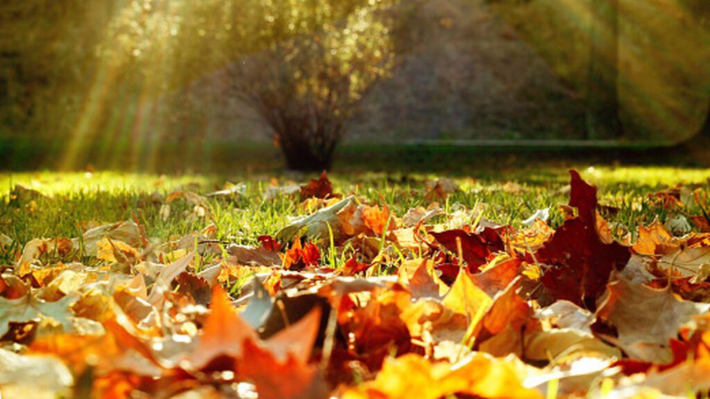 El otoño está a la vuelta de la esquina: ¿cuándo será el equinoccio este año?