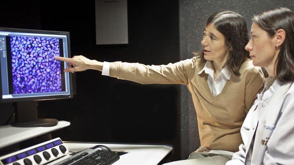 Entrevista a María Blasco, bióloga molecular