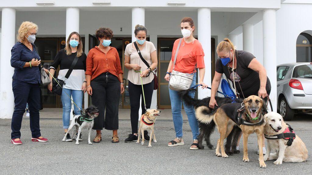 Terapia con perros para las víctimas de violencia de género en Cartaya, Huelva