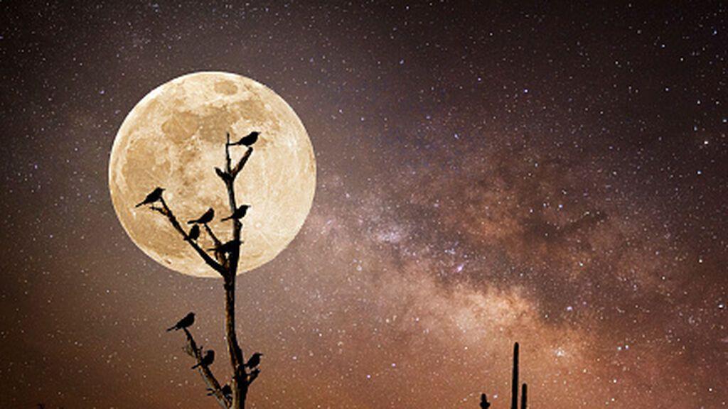 Luna llena de cosecha para despedir el verano: cuándo y cómo verla