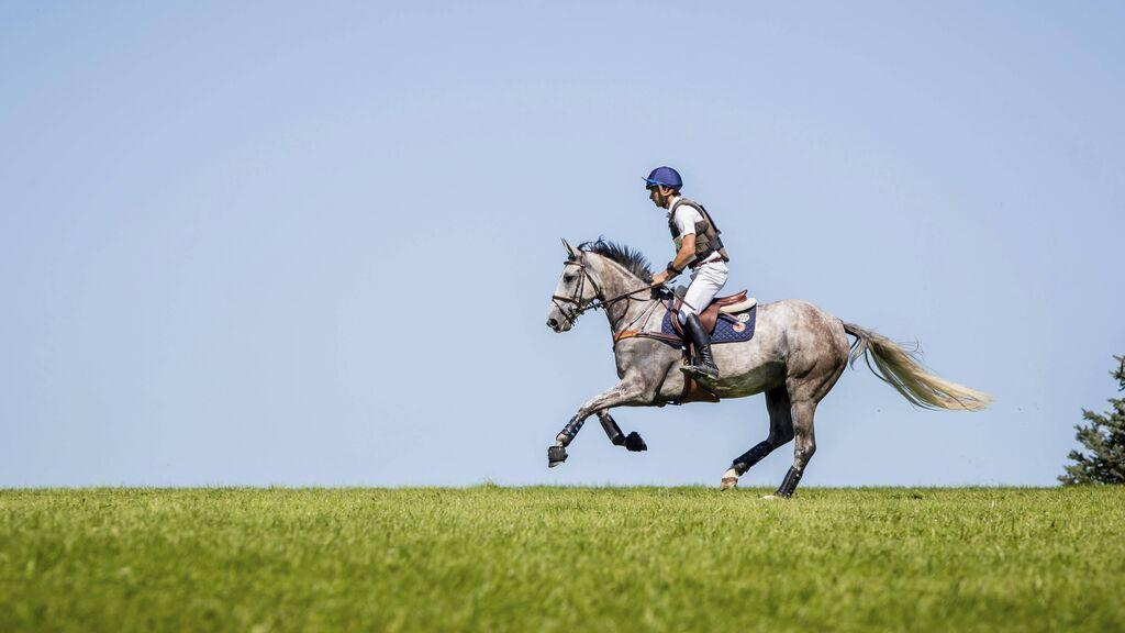 Muere un jinete de 16 años por un golpe de herradura del caballo cuando entrenaba en Alicante