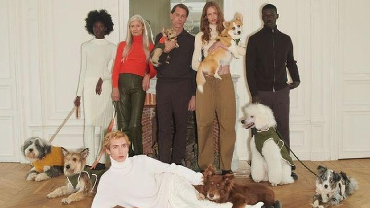 Zara lanza colección otoño/invierno para mascotas: desde gorros de punto hasta chubasqueros