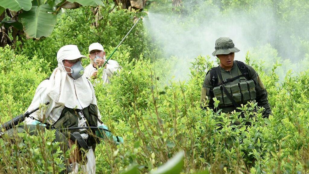 Colombia y EEUU acuerdan una nueva estrategia antidroga sin fumigación con glifosatos