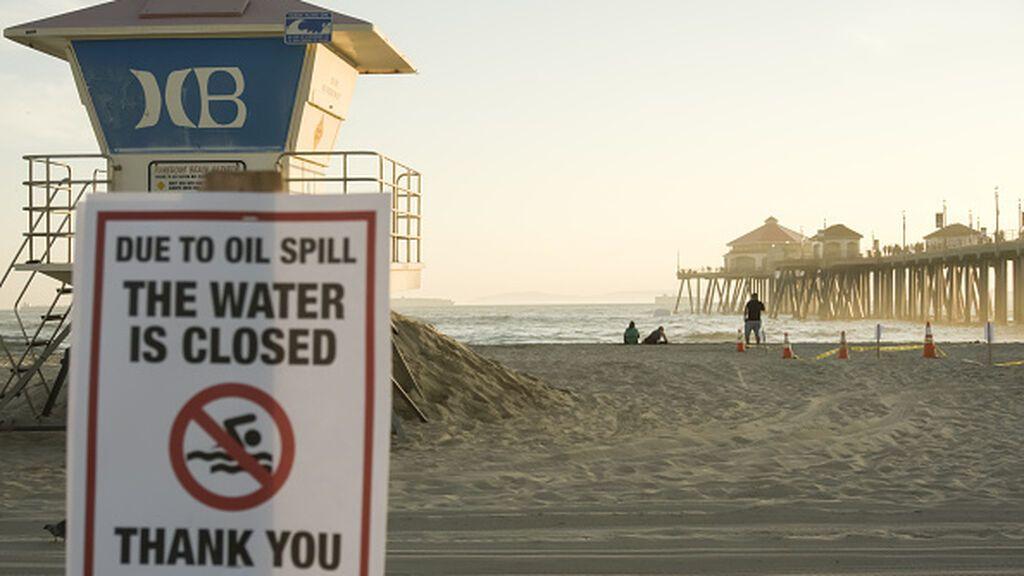 Peces y pájaros están muriendo en masa en la costa de California por un vertido de petróleo