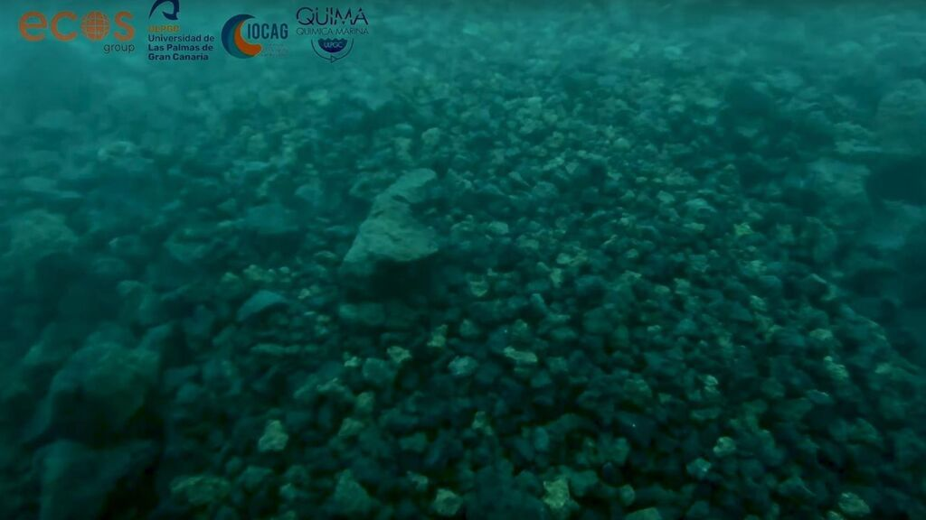 La ULPGC graba las primeras imágenes submarinas del delta que forma la lava en La Palma