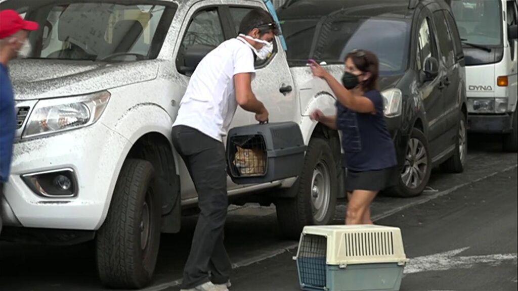Orden de evacuación en Los Llanos