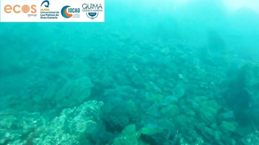 Las primeras imágenes submarinas del delta lávico de La Palma
