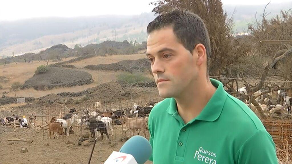 """Agustín, ganadero afectado por la lava en La Palma: """"Si no me llega ninguna ayuda no aguanto tres meses"""""""