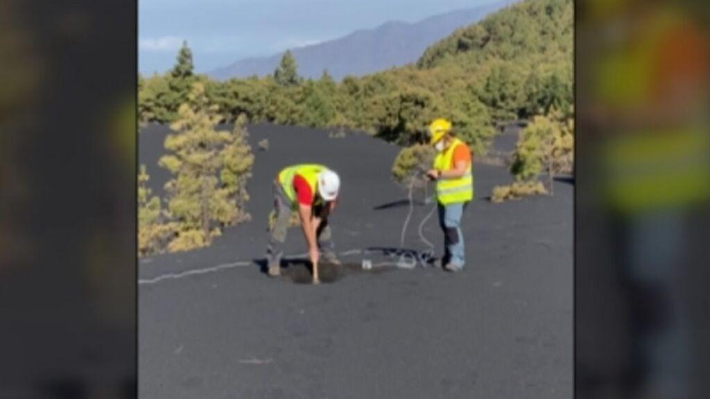 La ceniza acumulada en La Palma cubre hasta los pinos: los cientificos intentan predecir si habrá más bocas