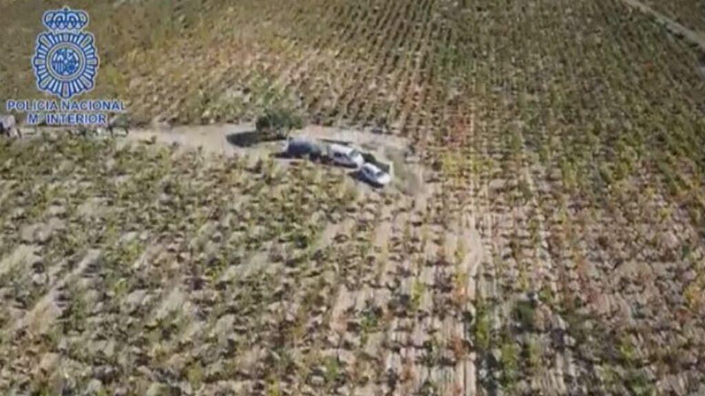 La Policía utiliza drones para controlar para  la vendimia en Álava.