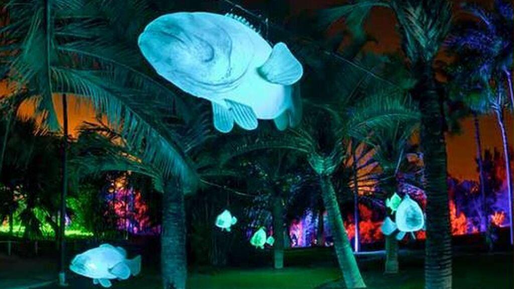 El Real Jardín Botánico rinde homenaje a Magallanes y Elcano con 'Explorium