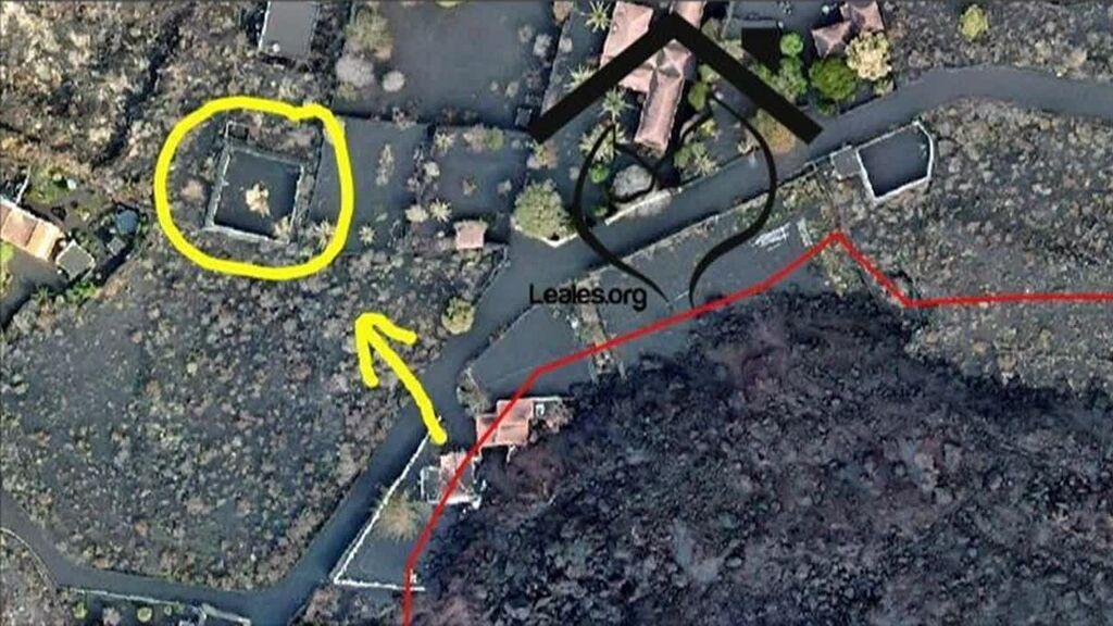 El rescate de los cuatro podencos atrapados por la lava, pendiente del permiso del Pevolca