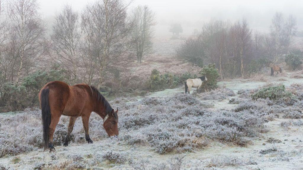 Posibles nevadas esta semana en España por la irrupción de una masa de aire frío