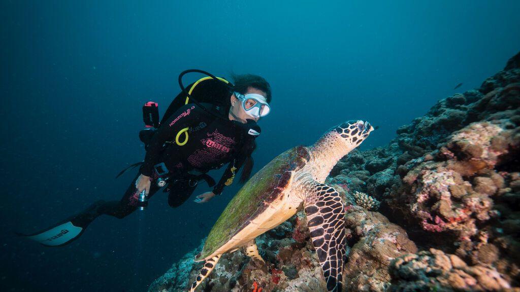 Laura Madrueño junto a una de las tortugas investigadas