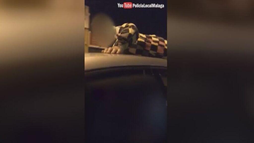 Identificado un conductor por circular por varias calles con un menor sobre el techo del coche