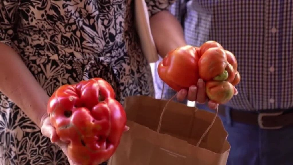 Tudela elige a su tomate más feo