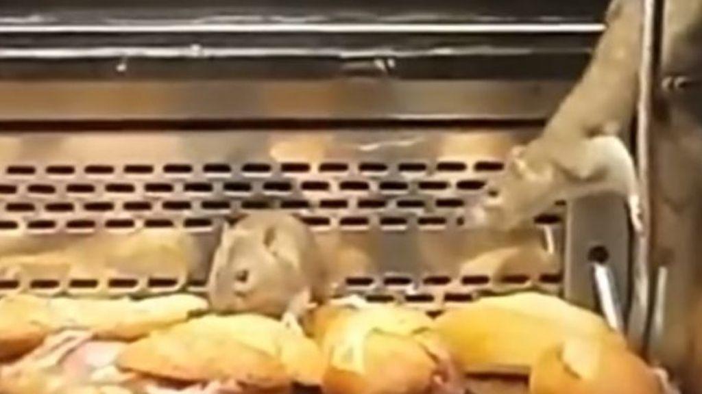 Ratas granier