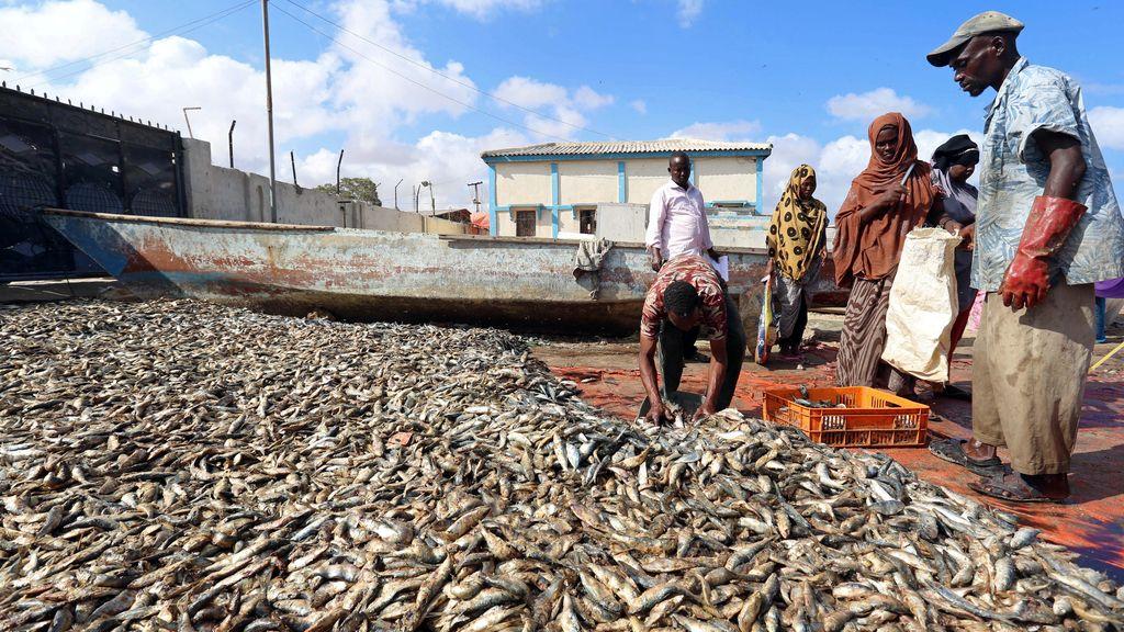 Pescadores somalíes preparan sus productos para la venta